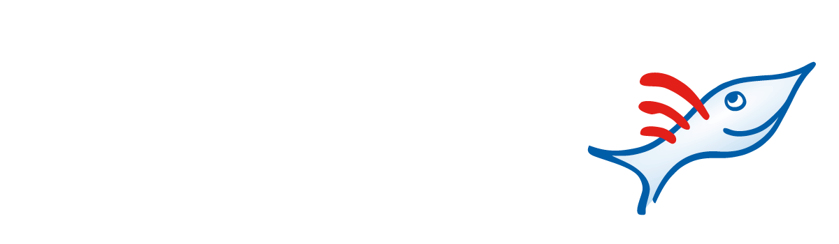 Scoutfish – Travel Community
